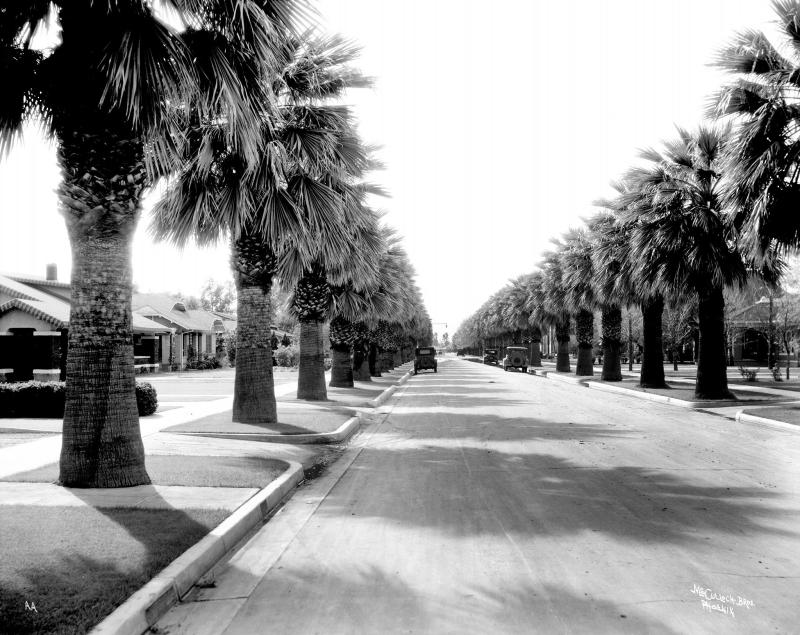 PalmLane_1930s