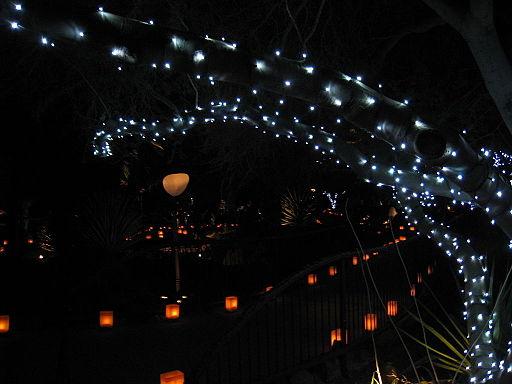 Las_Noches_de_las_Luminarias,_DBG_Phx