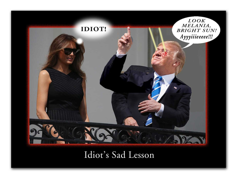 Idiot'sSadLessonW