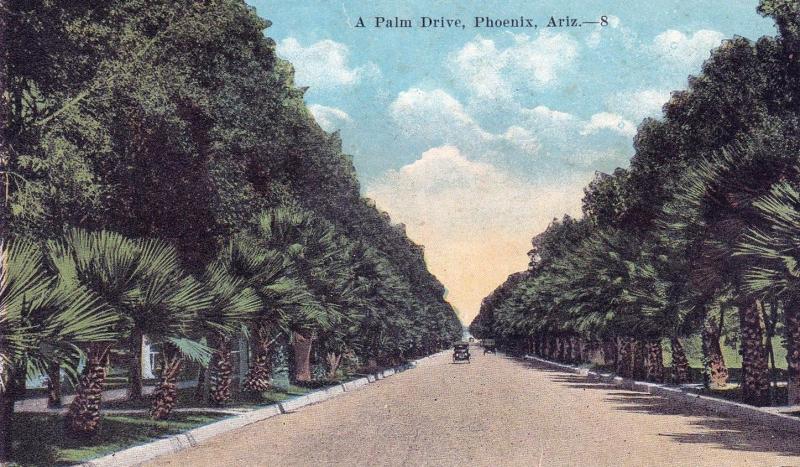 A_Palm_Drive_1920s