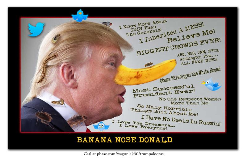 BananaNoseTrumpBW