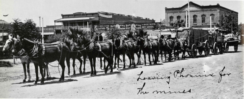 2nd St and Jeff 10-mule team freighter 1880s