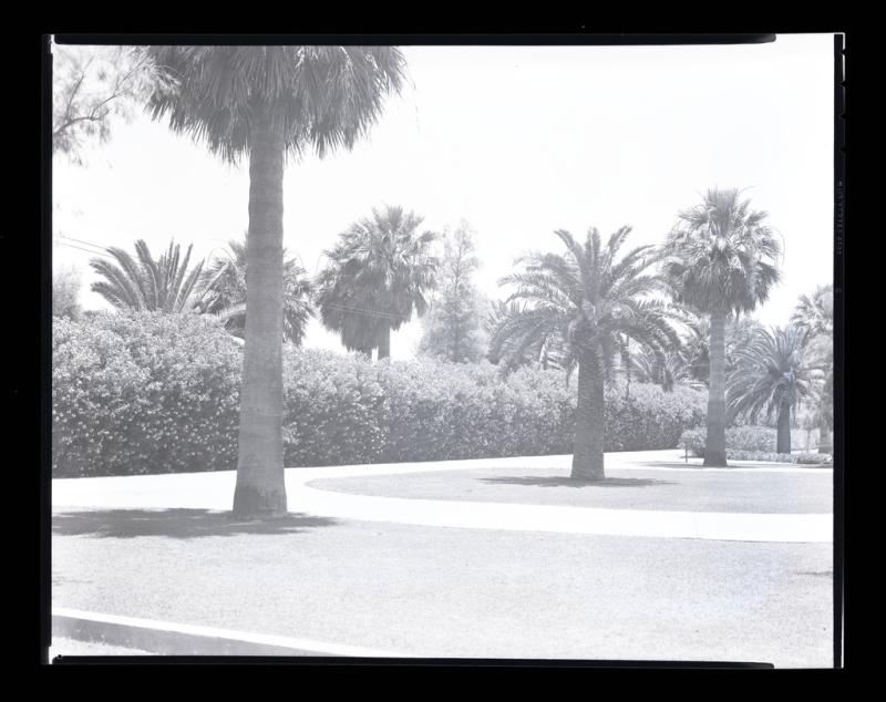 Greenwood Memorial Park 1941