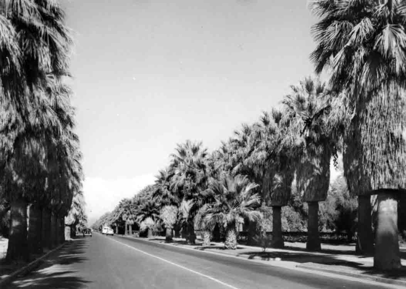 Central_McDowell_looking_north_1930s