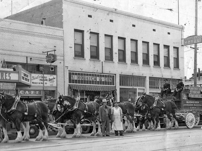 Washington_3rd_St_Budweiser_Clydesdale_horses_1940
