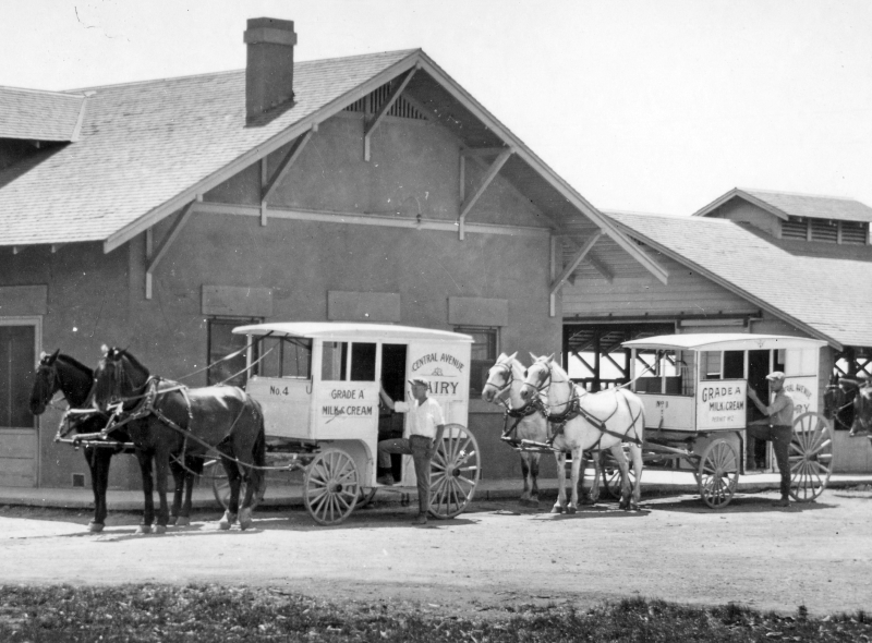 Central_Avenue_Dairy_delivery_wagons_horses_1937