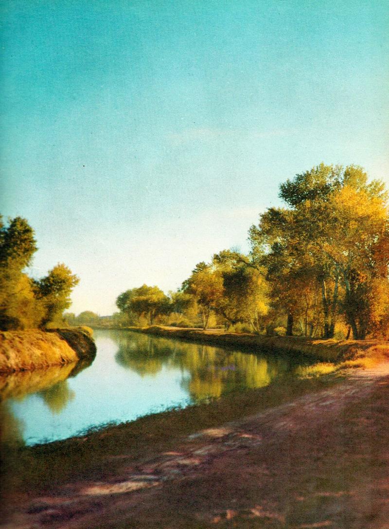 Arizona_Canal_1950s(1)