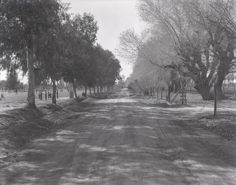 Orangewood Ave. 1939