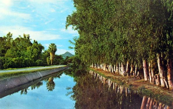 Arizona_Canal_Northern_7th_St_1960s(1)