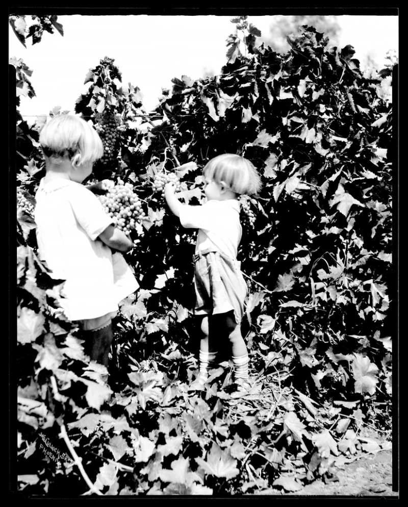 Jean and Billy Bumstead with grapes