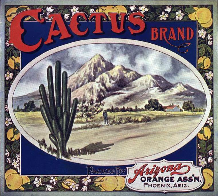 Cactus_Brand_orange_crate_label(1)