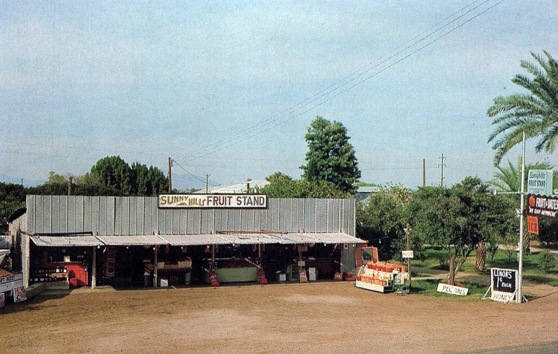 Sunny_Hills_Ranch_and_Fruit_Stand_3224_E_Baseline_Rd_1960s(1)
